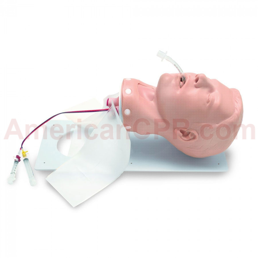 PDA STAT Deluxe Adult Airway Management Head - Simulaids