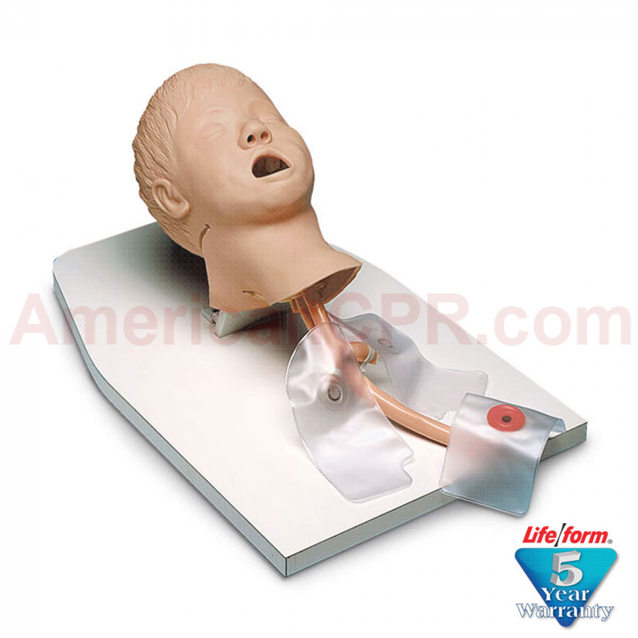 Child Airway Management Trainer on Stand with Case - LifeForm