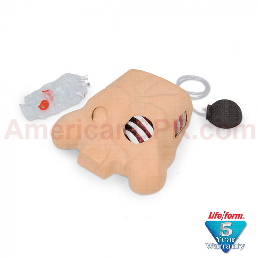 Life/form® Chest Tube Manikin - LifeForm