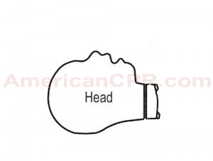 CPR Prompt Infant Head Assembly - Blue - CPR Prompt