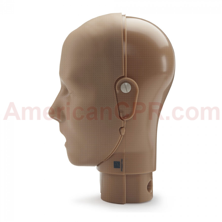 Prestan Adult Manikin Head Assembly - Dark Skin - Prestan Products