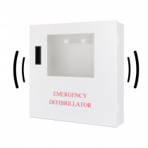 Wall Mount Case(Alarmed) - Defibtech