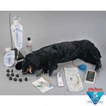 Life/form Advanced Sanitary CPR Dog - LifeForm