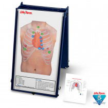 Auscultation Board with Case Only - LifeForm