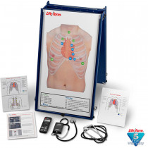 Auscultation Practice Board - LifeForm