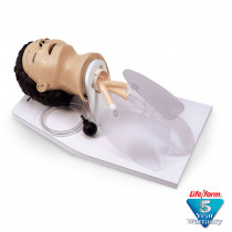 Adult Airway Management Trainer with Stand - LifeForm