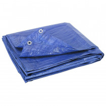 Vinyl Tarp - 12' x 12' - Value Brand