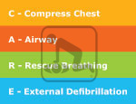 Image of the acronym and description of each letter. Compress chest, Airway, Rescue Breathing, External Defibrillation.